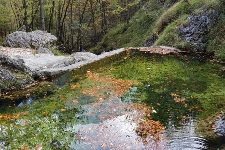 Bazen potoka Gorejca