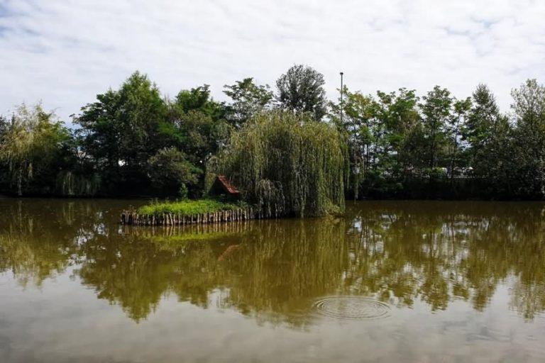 Betnavski ribnik