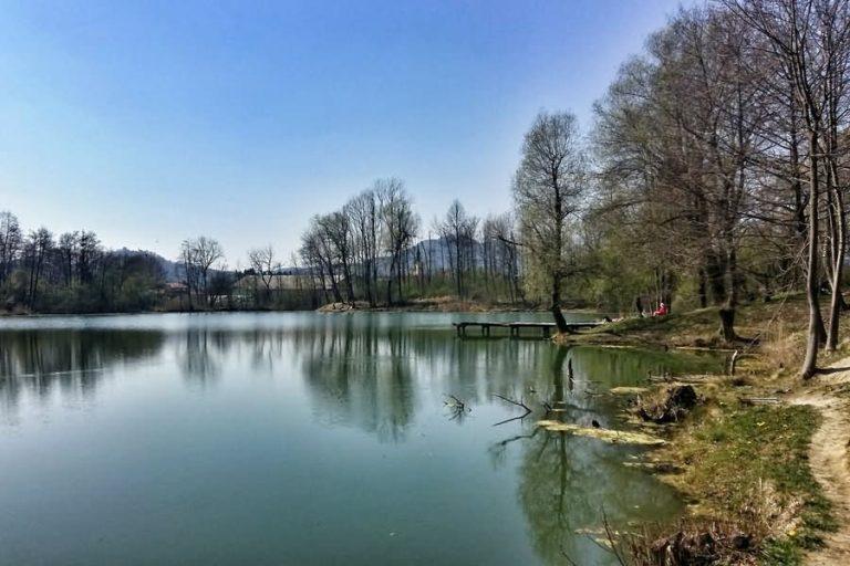 Bobovški ribniki