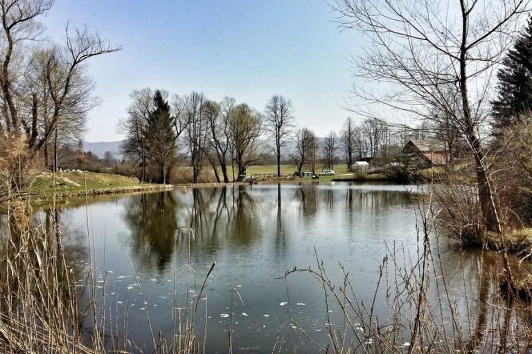 Črnopotoški ribnik