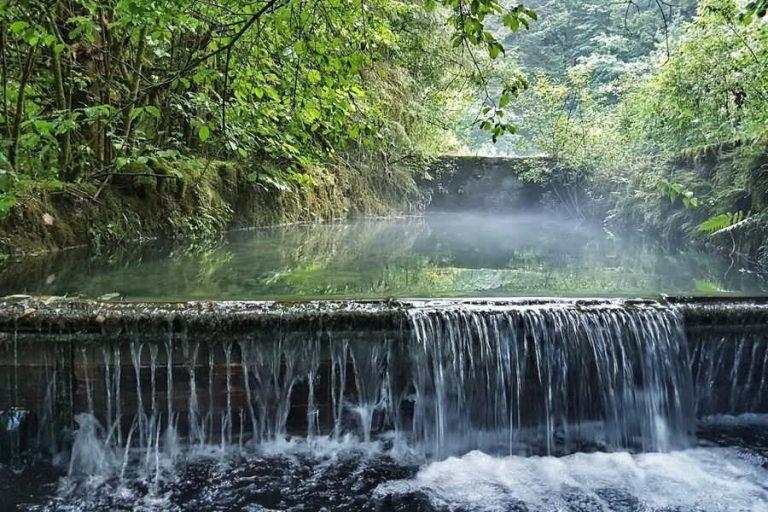 Izvir reke Ribnice