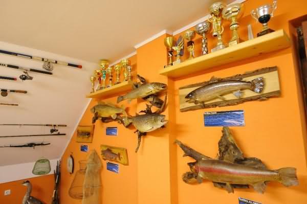 Ribiški muzej Dravograd