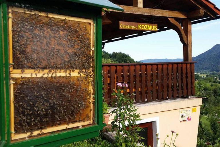 Čebelarstvo Kozmus Podčetrtek