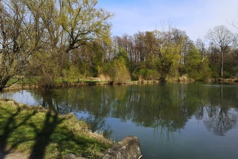 Miklavški ribniki