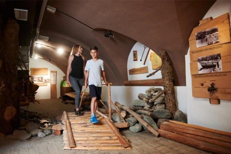 Muzej gozdarstva in lesarstva Vrbovec